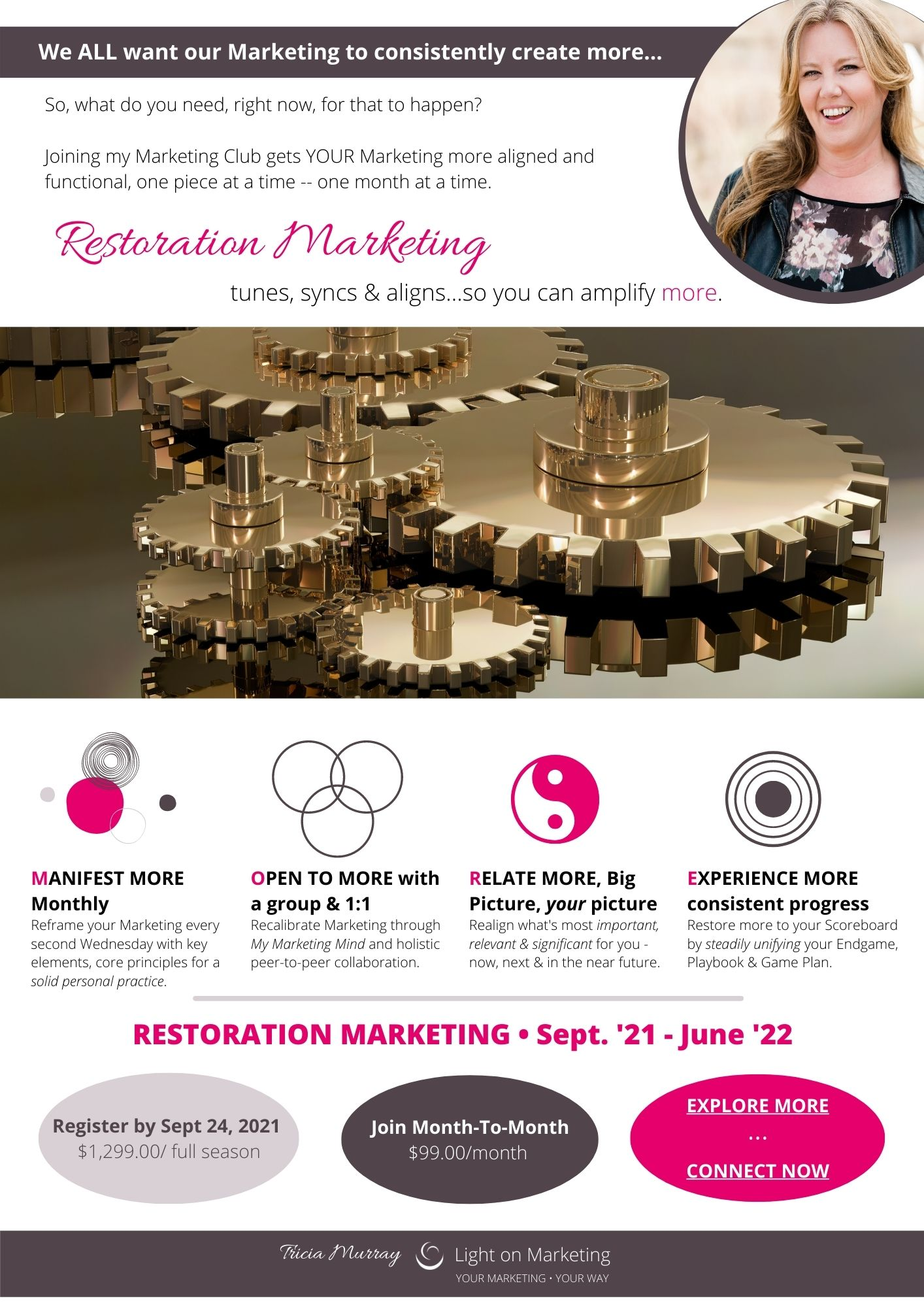 Restoration Marketing, One-Pager   Tricia Murray, Light on Marketing